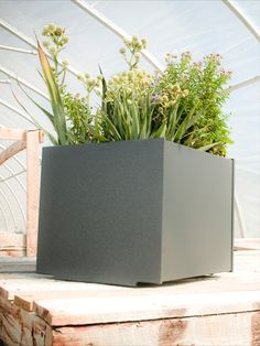 Made from recycled and recyclable plastic, Loll's modern planters, including this square 22-gallon garden planter, are made to withstand the test of time and extreme weather. The joinery allows for a slow, seeping drainage, and holes can easily be drilled in the bottom, if desired. #Loll #LollDesigns #recycledplastic #outdoorfurniture #sustainablefurniture #modernoutdoorfurniture #outdoorliving #patioinspiration #backyardinspo #planters #outdoorplanters Square Planters, Cement Planters, Modern Planters, Garden Planters, Garden Container, Contemporary Outdoor Decor, Outdoor Planter Boxes, Garden Bed Layout, New Bedroom Design