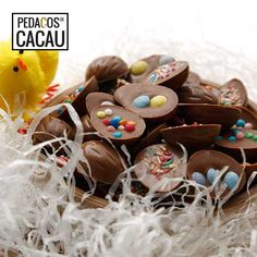 Ovinhos de chocolate com crocante colorido info@pedacosdecacau.pt Gingerbread Cookies, Cereal, Breakfast, Desserts, Food, Cocoa, Gingerbread Cupcakes, Morning Coffee, Tailgate Desserts