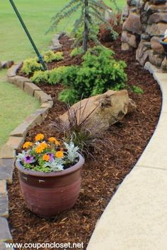 Save on Landscaping - How We Saved Thousands and tips so you can too! - Coupon Closet