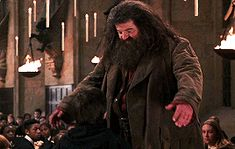 I think we all tend to forget that Harry always had a father figure in Hagrid. That man loved him just like James would've loved him. Harry Potter Friends, Harry Potter Actors, Harry James Potter, Harry Potter Universal, Harry Potter World, Daddy Yankee, Potter Puppet Pals, Rubeus Hagrid, Fandoms