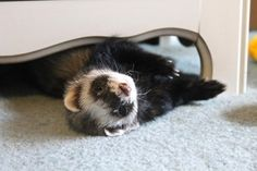 """""""Everything that's going on right now is happening for a reason :)"""" 