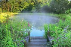 Backyard Ponds and Waterfalls - Natural Landscaping