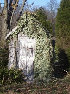 outhouse .