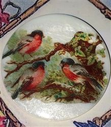 3 Birds on a Branch on Mother of Pearl Button Large Size BeautyNone