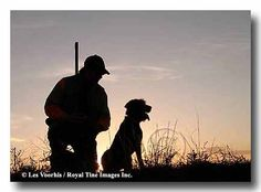 hunting with dog sunset - Bing Images
