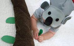 Koala Bear Baby Cost