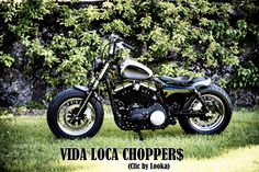 Sportster Harley Sienne Designed by Vida Loca Choppers in 2013 Kustom, Choppers, Motorcycle, Design, Siena, Chopper, Motorcycles, Motorbikes