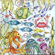 2 page layout.....One fish. Two fish. Red fish. Blue fish. What a lot of fish there are!  from Rita Berman's Die Welt unter der Lupe-zu Wasser. Used Polychromos, FC pastels, Neocolors II & Pitt pens.