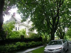 Mozart Guest House - Cap Hill