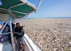"""Maré de lixo de plástico"" invade a costa de uma ilha paradisíaca das Caraíbas | UniPlanet"