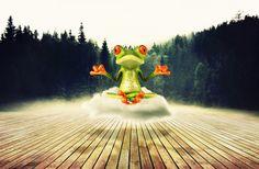 Sapo que Medita | Mais trabalhos aqui: http://paradoxidal.blogspot.com | #Sapo Meditação #Yoga #Nuvem #Floresta | #Frog #Meditation #Cloud #Forest | #Gimp #ArteDigital #Manipulação | #DigitalArt #Manipulation