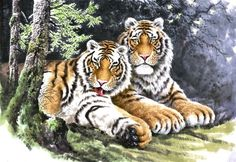 (North Korea) Tigers by An Myeong-seok (1960-  ). 안명석.