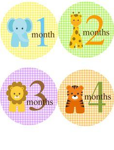 Bebé pegatinas mensual... Bebé mes pegatinas para chico o chica/selva Zoo animales / mes 12 pegatinas para los más pequeños / bebé regalos