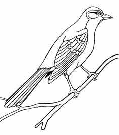 Free Mockingbird Coloring Page