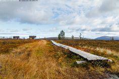 Trekking, Autumn, Mountains, Nature, Travel, Naturaleza, Viajes, Fall Season, Fall