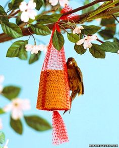 Recycled Bird Feeder from mesh fruit bags.  Peanut butter, vegetable shortening; melt in a microwave for 1 1/2 minutes on high.  Mix in quick-cooking oats, cornmeal, and flour.  Pack mixture into paper cups and cool.  These will keep in the refrigerator for long while.  Hang upside down in a mesh bag and your birdy friends will love it.  Hang it where you can enjoy the view!