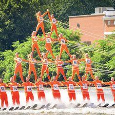 Sarasota Ski-A-Rees Water Ski Show Team