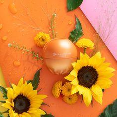 Incadessence Enjoy Perfume, Image, Fragrance