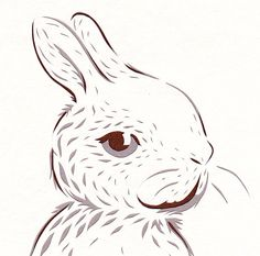Bright Eyes Bunny Original Cut Paper by sarahbrowning on Etsy, $120.00
