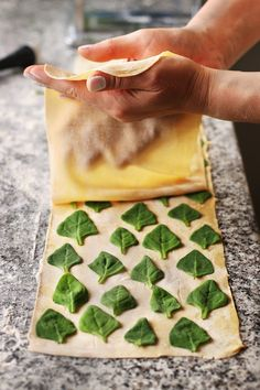 Boost the flavor of your ordinary pasta just adding som… Laminated spinach pasta .Boost the flavor of your ordinary pasta just adding some fresh herb Pasta Kunst, Pasta Fresca Rellena, Sweet & Easy, Pasta Casera, Homemade Pastries, Spinach Pasta, Spinach Leaves, Fresh Pasta, Dough Recipe