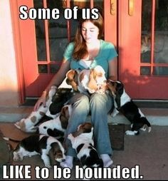 Dog lovers love being hounded