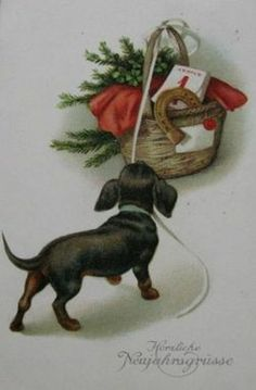 "Vintage German Dachshund ""Happy New Year"" postcard (1920's) on marktplaats.nl"