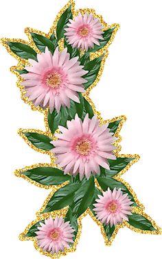 http://foto-cvetov.com/gerbery.htm
