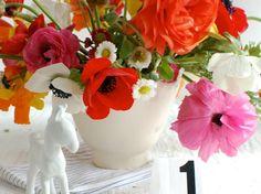 Im Frühling dekorieren - Ein Blumenstrauß aus Anemonen und Gartenrosen in kräftigen Farben