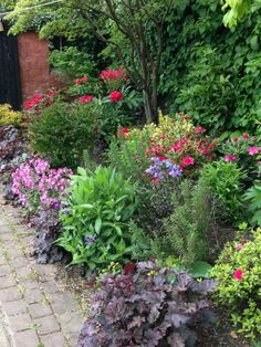 A shady border : rustic Garden by Anne Macfie Garden Design Cottage Garden Borders, Cottage Garden Design, Small Garden Design, Border Garden, Small Garden Borders, Shrubs For Borders, Garden Bar, Garden Boxes, Shade Garden Plants