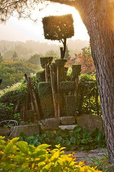 Jardim de Bonnieux, Nicole de Vesian a truely inspirational gardener ..blessed to have been in this garden ...
