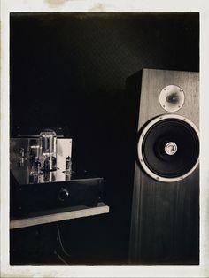Zu Audio Soul Superfly, Audion Black Shadow 845