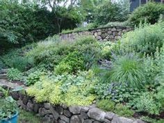 landscaping on a slope