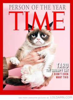 Person of the year: Grumpy cat Tard on Time magazin