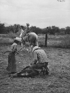 oldsmokeys:  6-year-old cowboy and his 8-year-oldcowgirl sister learn how to rope cattle from their father,July 1954.Photo by Allan Grant.