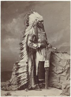 Portrait of Chief Washi-ta-tonga or American Horse, 1880