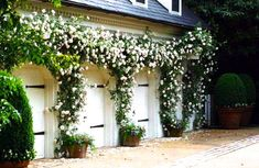 Climbing Roses – Blue and White Home There is nothing more beautiful than climbing roses on a home's exterior walls. Garage House, Garage Doors, Barn Garage, Outdoor Spaces, Outdoor Living, Landscape Design, Garden Design, Fence Design, Modern Farmhouse Exterior
