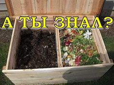 Основные правила хорошего компоста