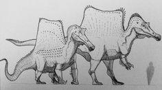 The Spino Difference by artisticallyautistic Dinosaur Sketch, Dinosaur Drawing, Dinosaur Art, Prehistoric Wildlife, Prehistoric World, Prehistoric Creatures, Jurassic Park, Jurassic World Dinosaurs, All Dinosaurs
