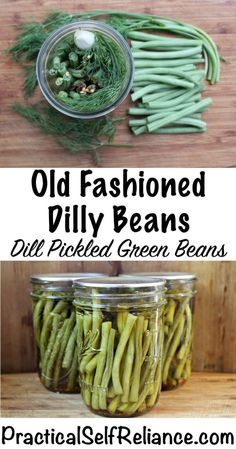 Pickled Dilly Beans (Dill Pickled Green Beans) Pickled Dilly Beans (Dill Pickled Green Beans) Pickled Dilly Beans (Dill Pickled Green Beans) — Practical Self Reliance<br> My first dilly beans were given to me by a true native Vermonter. Canning Tips, Home Canning, Canning Recipes, Dilly Beans Recipe Canning, Pickeling Recipes, Canned Green Bean Recipes, Canning Process, Eating Clean, Saving Money