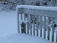 Beautiful Winter Scenes in Connecticut