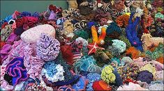 Crocheted coral reef. Crocheted!