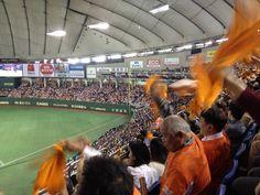so funny to look those ojisan. haha. go yomiuri, go sakamoto<3