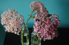 enjoying the simple things.: friday flowers by rachel