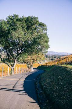 Newton Vineyard, Napa, CA Hunter Valley Winery, Travel Around The World, Around The Worlds, Napa Valley Wineries, Gal Meets Glam, California Travel, Best Memories, Wine Tasting, The Good Place