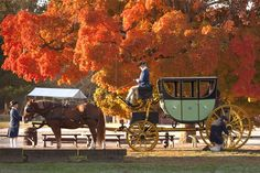 Fall Carriage Tours and No Pin Limits