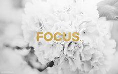 Focus Wallpaper