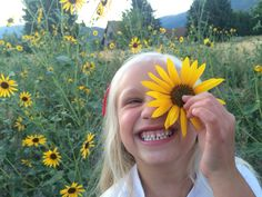 sunflowers & kiddos