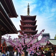 金龍山 浅草寺 in 浅草, 東京都 - Senso Ji Temple in Asakusa. Enjoy the surrounding neighborhood and outdoor market as you walk up to Tokyo's oldest temple
