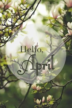 75 Hello April Quotes & Sayings Seasons Months, Days And Months, Seasons Of The Year, Months In A Year, Four Seasons, 12 Months, Neuer Monat, Calendar Girls, New Month