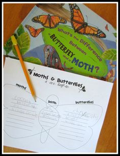 Moths and Butterflies - might be nice to read this book and create a double bubble if we have time during our insects and plants unit